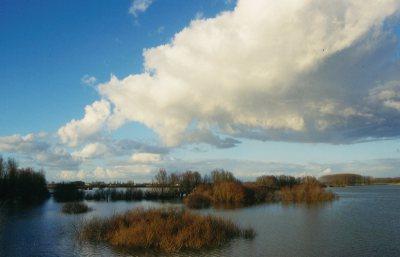 Oude Waal bij hoog water - foto: Peter Eekelder